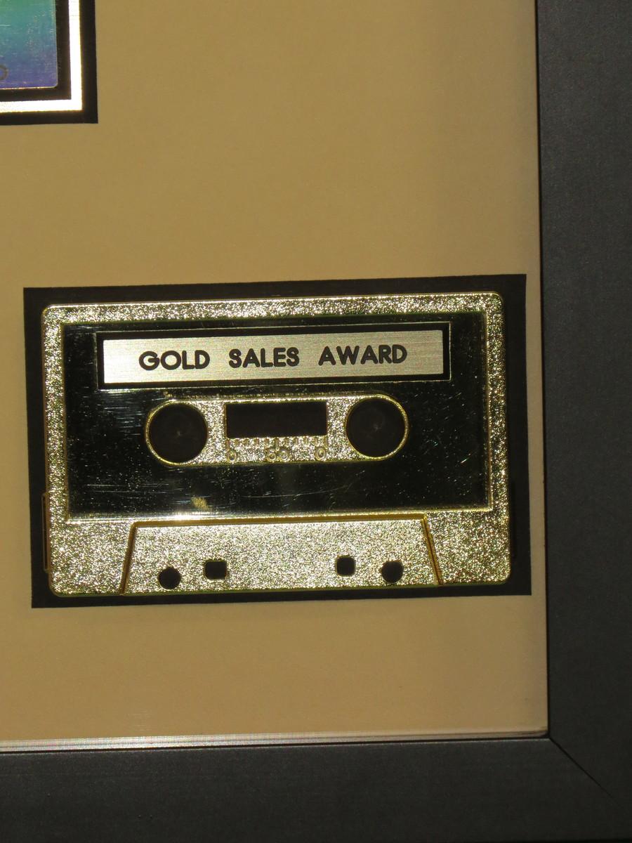 Vitalogy RIAA Gold Award Presented To Pearl Jam